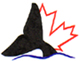 Canadian Whale Institute