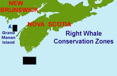 right whale conservation areas